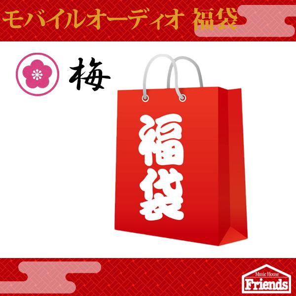 【限定10セット】 モバイルオーディオ 1万円福袋 【梅】