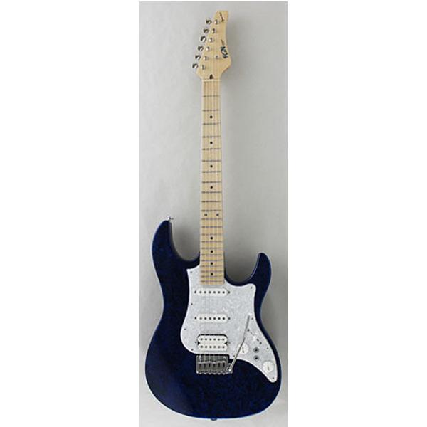 FUJIGEN(フジゲン) EOS-ASH-M-SP1/FRB - エレキギター -