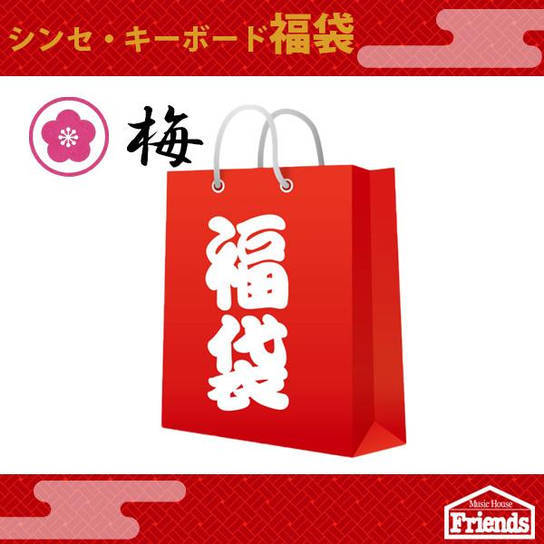【限定5セット】 シンセ・キーボード福袋 【梅】