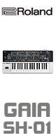 Roland(�?����) /  Synthesizer GAIA SH-01 - ���������� -�������ꥻ�å����Ƣ������ڡ��إåɥۥ�(OV-X8)����OA���åס���24���å��Ѵ��ץ饰���ڥ���RCA/Phone�������å������³�����֥� 3M 1�ڥ�����