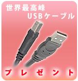 """""""世界NO.1""""USBケーブルプレゼント [P]!!※Pioneer商品用"""