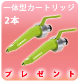 【P】CONCORDE GREEN 2本セット
