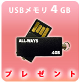 【P】USBメモリ 4GB プレゼント