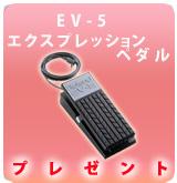 【P】EV-5  プレゼント