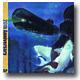 """LAMP EYE / 証言 20th Anniversary Edition 7"""" アナログレコード 【レコードの日】 ※お一人様二枚まで"""