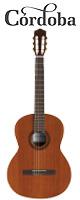 Cordoba(コルドバ) / Iberiaシリーズ C5 クラシックギター