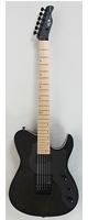 FUJIGEN(フジゲン)/ JIL-ASH-DE664-M/TBF - エレキギター -