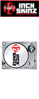 12inch SKINZ / Stanton STR8.150 Skinz (Brushed SILVER) ペア 【STR8.150用 マグネットタイプスキン】