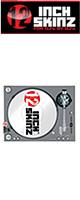 12inch SKINZ / Stanton STR8.150 Skinz (GRAY) ペア 【STR8.150用 マグネットタイプスキン】