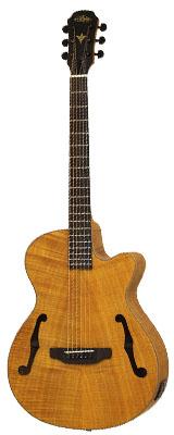 Arai(アリア) / FET-F2 STBR エレクトリック・アコースティックギター