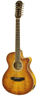 Aria(アリア) / FET-DLX/12 LVS 12弦エレクトリック・アコースティックギター