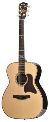 1本限り大特価 Headway(ヘッドウェイ) / 2020 HOM-501 D,A,S/ATB アコースティックギター 2020年限定製作 新品特価 【純正ハードケース付属】