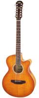 Aria(アリア) FET-12/SPL LVS 12弦ギター エレアコ