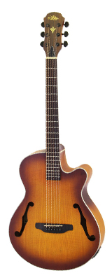 Aria(アリア) FET-F1 LVS エレアコ ギター