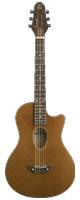 【ストック品 現品限り】 BambooInn(バンブーイン) / BambooInn-K ナイロン弦ギター Char プロデュース