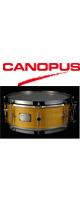 CANOPUS(カノウプス) / 1ply Soft Maple Brass Straight Hoop Model SSSM1465SH 【スネアバッグ追加可能】-スネア -