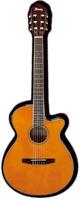 Ibanez(アイバニーズ) AEG10NII TNG クラシックギター エレガット
