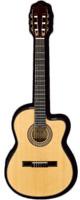 Ibanez(アイバニーズ) GA37STCE NT エレガット クラシックギター