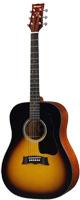 Morris(モーリス) G-01E TS アコースティックギター エレアコ PU付き
