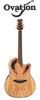 Ovation(オベーション) / Celebrity Elite Plus CE44P(SM) Spalted Maple  - アコーステックギター エレアコ -