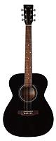 SX Guitars(エスエックス ギターズ) /  アコースティックギター SD2-BLK -