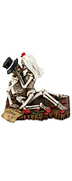 StealStreet / Love Never Dies Collectible Skeleton Sculpture SS-Y-7724 - ドクロ インテリア -