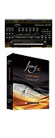 Synthogy(シンソジー) / Ivory II Grand Pianos 【ピアノ・オルガン音源】