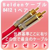Beldenケーブル 1ペアプレゼント!!