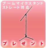 【P】ブームマイクスタンドESM-3601